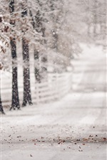 Winter, road, trees, snow, blurry
