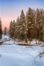 iPhone fondos de pantalla Invierno, nieve, bosque, árboles, río, anochecer