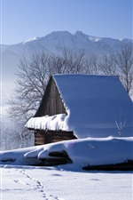 Preview iPhone wallpaper Winter, snow, house, trees, fog, morning