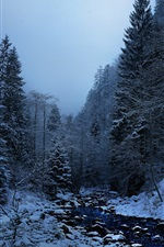 Preview iPhone wallpaper Winter, snow, trees, creek, dusk