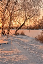 Preview iPhone wallpaper Winter, snow, trees, river, bench, sunrise