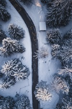 Preview iPhone wallpaper Winter, trees, road, snow, from top view