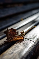 Wood bench, leaf, glare