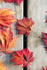 Preview iPhone wallpaper Wood board, red maple leaves