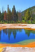 Preview iPhone wallpaper Yellowstone National Park, lake, trees, mountains, autumn, USA
