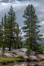 Yosemite National Park, trees, clouds, mountains, California, USA