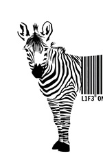 Preview iPhone wallpaper Zebra, barcode, white background