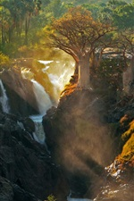Preview iPhone wallpaper Africa, Kunene River, Epupa Falls, trees, nature