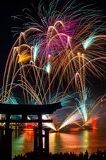 Fogos de artifício lindos, noite, cidade, ano novo