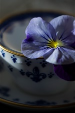 Preview iPhone wallpaper Blue flower and cup