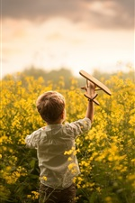 Child, little boy play toy plane in the rapeseed flowers field