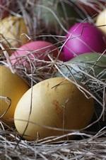 iPhone fondos de pantalla Huevos coloridos, heno, Pascua