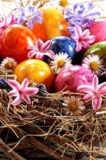Preview iPhone wallpaper Easter, colorful eggs, flowers, nest, white background