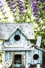 Preview iPhone wallpaper Flowers, birdhouse