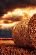 Preview iPhone wallpaper Hay, field, clouds, sunshine, dusk