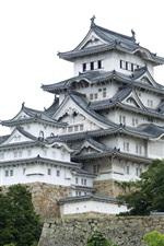 Himeji Castle, Japan, architecture, trees