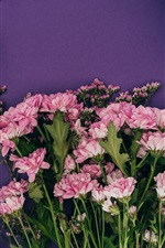 Holiday, gifts, flowers