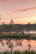 Preview iPhone wallpaper Lake, trees, fog, grass, dawn