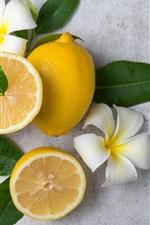 Preview iPhone wallpaper Lemon, plumeria