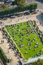 London, England, city, park, top view