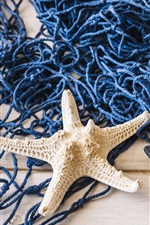 Preview iPhone wallpaper Mesh, starfish, toy boat