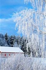 미리보기 iPhone 배경 화면 파이 미오, 핀란드, 나무, 눈, 집, 겨울