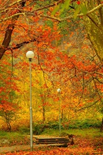 Preview iPhone wallpaper Park, trees, lamps, autumn