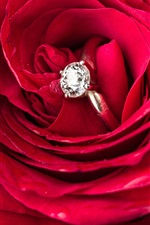Preview iPhone wallpaper Red rose, diamond ring, romantic