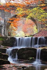 Preview iPhone wallpaper River, waterfall, bridge, stones, trees, autumn