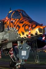 Preview iPhone wallpaper Sepecat Jaguar GR.3A fighter