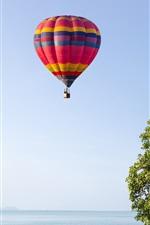 Céu, balão de ar quente, palmeiras, praia, mar, verão