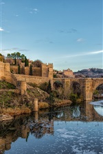 Spain, Toledo, bridge, river, city, grass