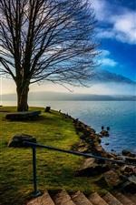 スイス、湖、木々、雲、朝