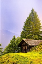 Preview iPhone wallpaper Trees, grass, mountains, house, summer