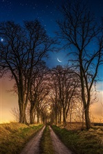 Preview iPhone wallpaper Trees, path, grass, moon, stars, night