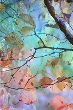Preview iPhone wallpaper Watercolor painting, tree, leaves, autumn