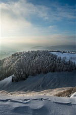 Preview iPhone wallpaper Winter morning, snow, trees, mountains
