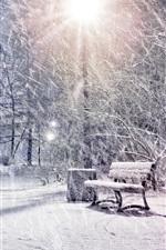 Winter, snow, park, trees, lights, night