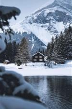 Preview iPhone wallpaper Winter, trees, river, houses, snow