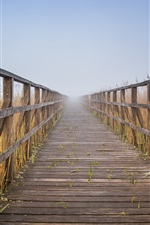 Preview iPhone wallpaper Wooden path, fence, reeds, fog, morning