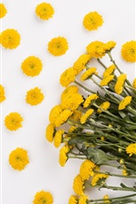 Preview iPhone wallpaper Yellow daisy, bouquet, white background