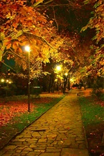 Preview iPhone wallpaper Autumn, park, trail, night, leaves, lamps