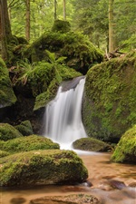 Preview iPhone wallpaper Baden-Wurttemberg, Germany, rocks, moss, waterfall