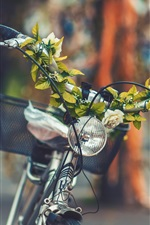 Preview iPhone wallpaper Bike front view, basket, lamp, flowers, leaves