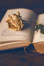 Preview iPhone wallpaper Book, dry rose