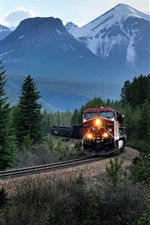 Preview iPhone wallpaper Canada, mountains, train, trees