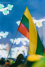 Preview iPhone wallpaper Celebration, Kaunas, Lithuania, flag, people