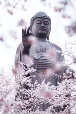 Preview iPhone wallpaper Cherry blossoms, buddha, statue