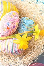 Colorful eggs, daffodils, daisy, Easter
