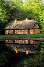 Preview iPhone wallpaper Denmark, house, lake, trees